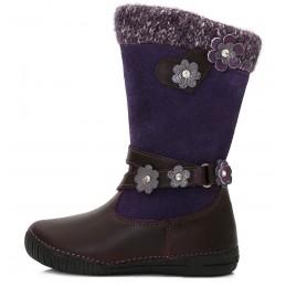 Violetiniai ilgaauliai...